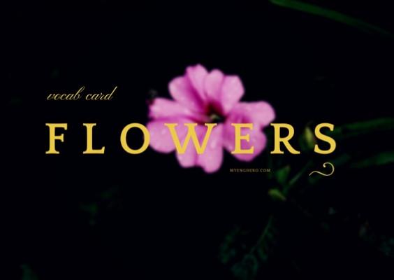 ดอกไม้ (Flowers)